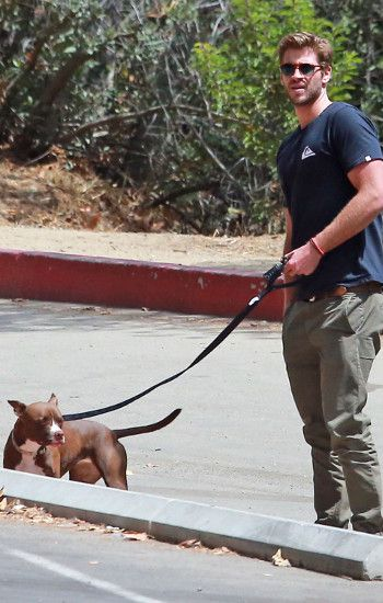 Liam Hemsworth y Dora